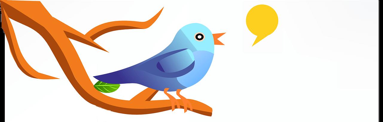 Werben bei Twitter