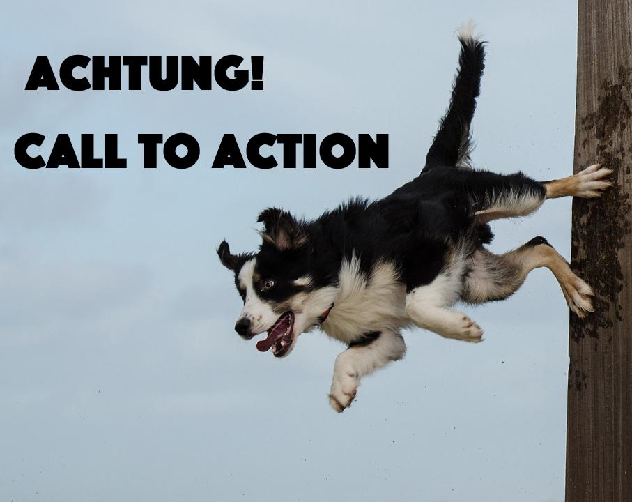 Callt to Action Button Beispiele