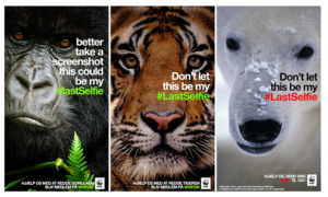 LastSelfie WWF Screenshot Beispiel Virales Snapchat Marketing
