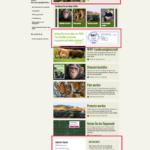 WWF Landingpage als Beispiel für Conversion Optimierung im Online Fundraising