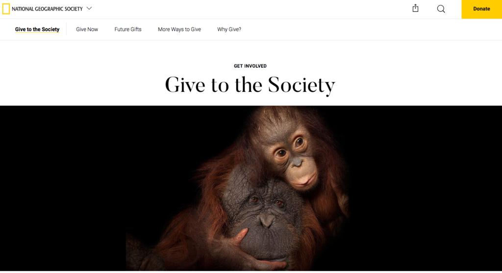 National Geographic setzt direkten Blickkontakt mit Orang Utans zur Ansprache der Nutzer ein