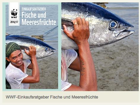 Ungewöhnliche Aufnahme von Mensch und Fisch
