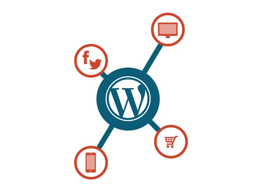 Als Wordpress Agentur verfassen wir auch Ihren Content.