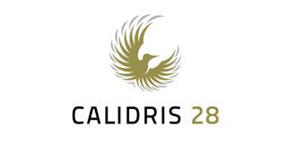 Calidris 28