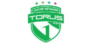 Torus1