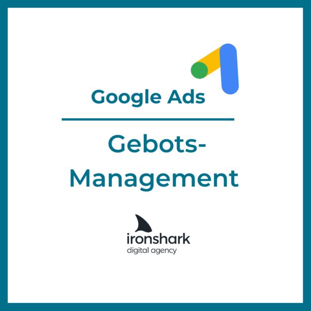 Google Ads Gebotsmanagement